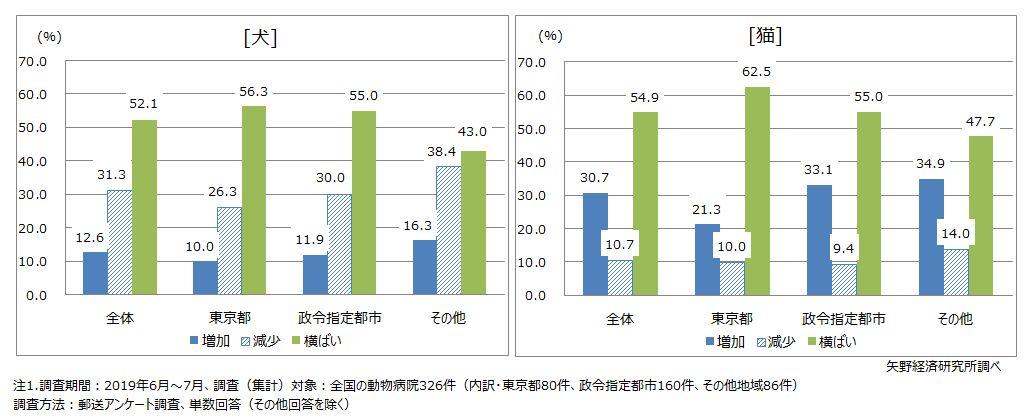 臨床現場における犬猫の診療頭数の増減動向(地域区分別)